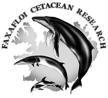 Faxafloi Cetacean Research, Iceland